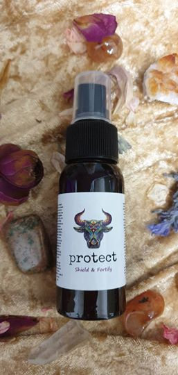 Protect Shield & Fortify 50ml
