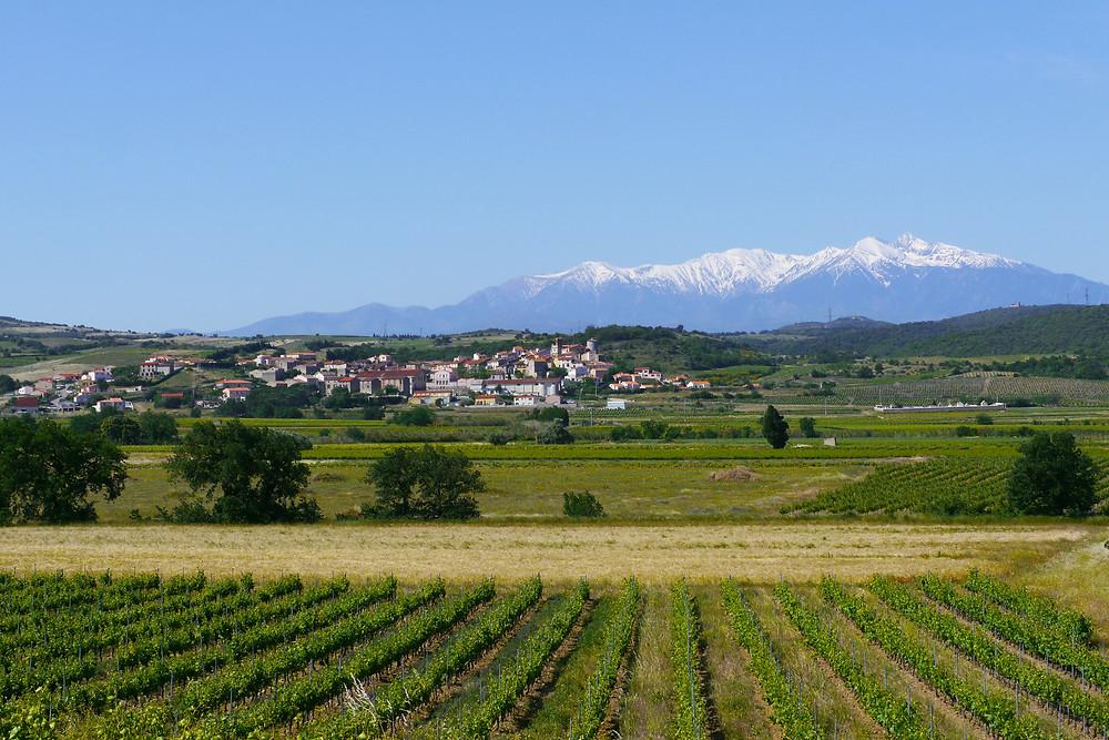 Villages, vignobles et paysages de la Vallée de l'Agly - Montner