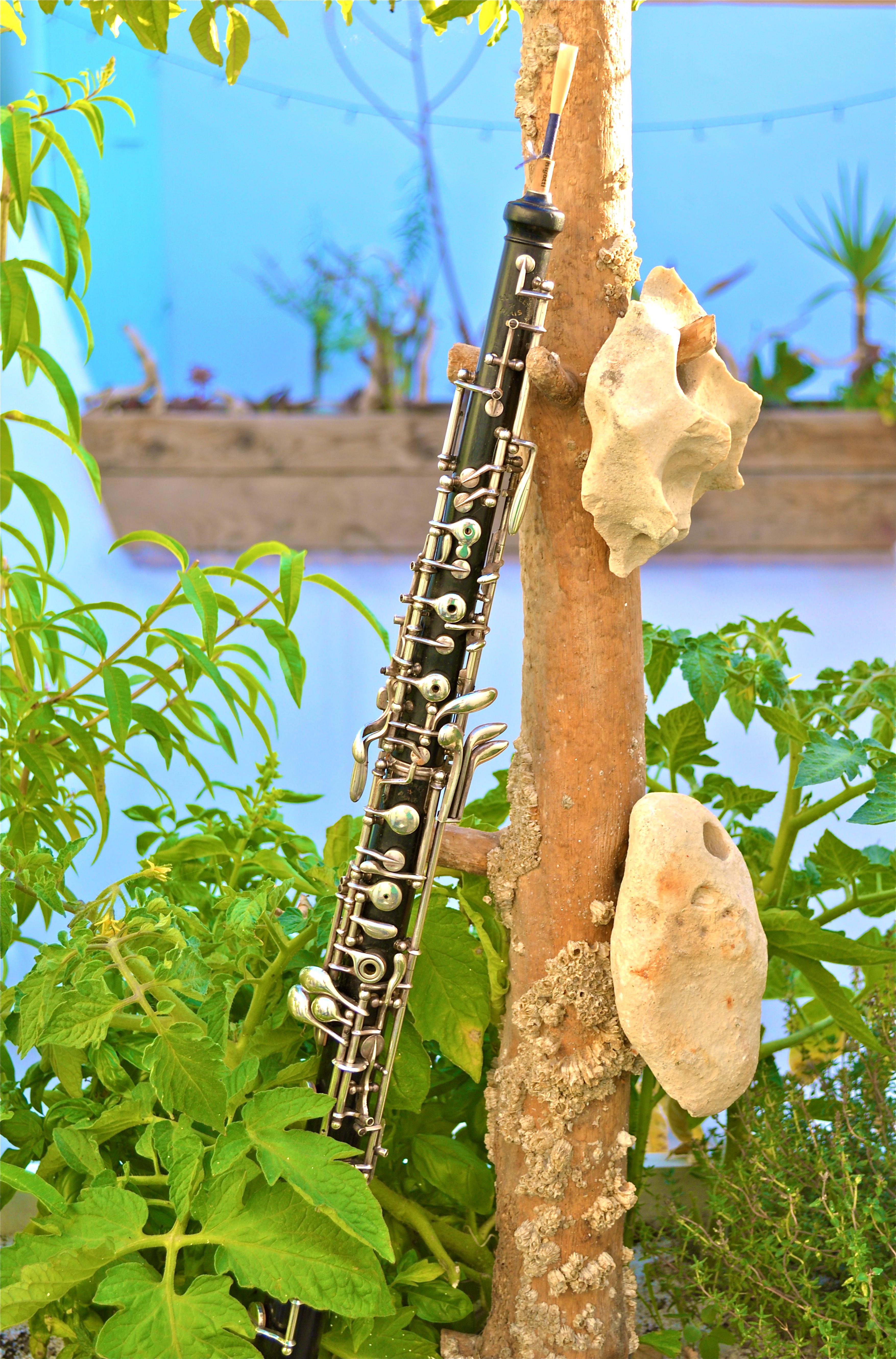 Clarinette © Maud Landes