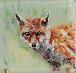 Eve's Fox