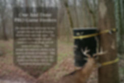 The best bear proof deer and game gallon drum feeder - We started One And Done for the people that got tired of buying feeders over and over again. The people that wanted a feeder resistant to bears, hogs, and all kinds of varmints.  The people that wanted a feeder to be used in all kinds of weather. The people that wanted to buy one feeder and be done with it. We build these feeders for you.
