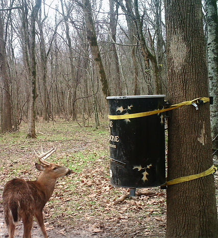 The best automatic deer feeder with motor and timer that is from Texas