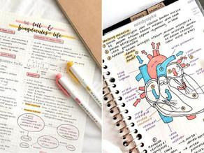 The Rise of Studygrams, StudyTube & the StudyTube Project