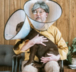 In home pet nursing care