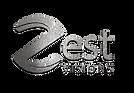 Zest Visions Logo Light.png