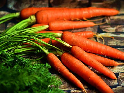 Zanahorias Cultívalas en casa, aquí te decimos como.
