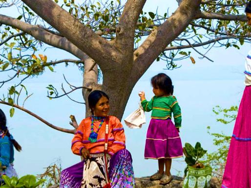 La riqueza natural en manos y protección de los pueblos indígenas.