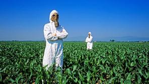 Los agroindustriales amparados para seguir importando glifosato