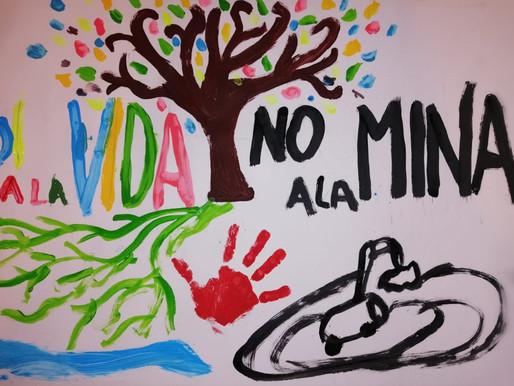 No a la minería en Veracruz