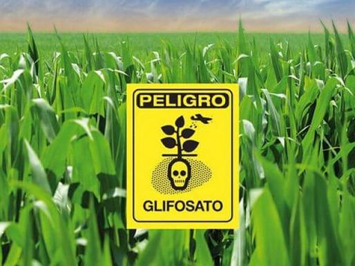 El glifosato es nocivo para el medio ambiente y afecta la salud.