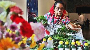 En Defensa de la Medicina Tradicional Indígena