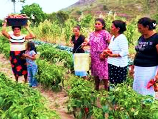 Mujeres y la agricultura.