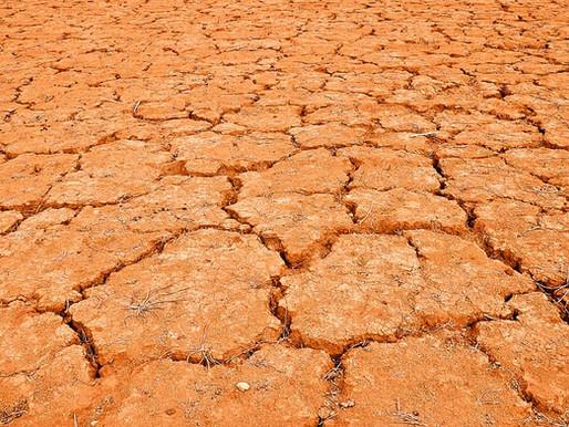 Calor extremo y sequía aguda ya son asuntos de seguridad nacional.