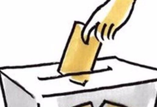 ELECCIONES Y RENOVACIÓN DEMOCRÁTICA