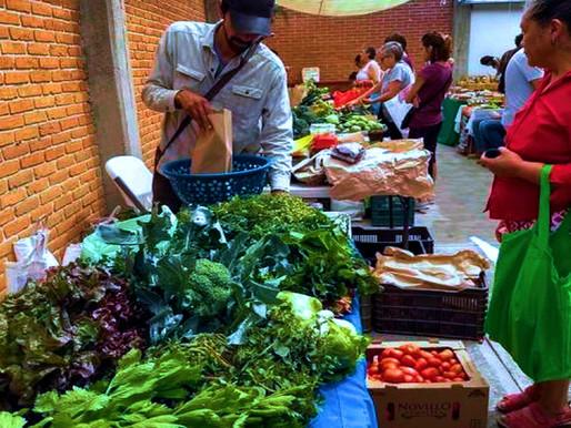 Tianguis alternativos como apoyo a la soberanía alimentaria.