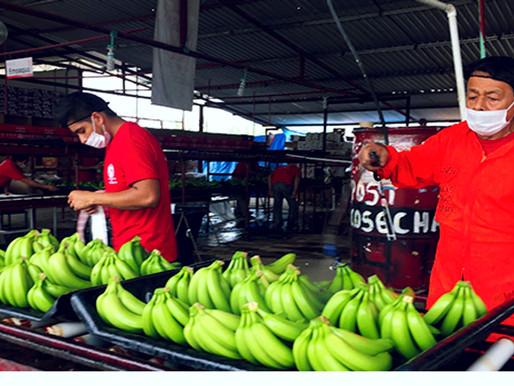 Comercio agropecuario México-China, a pesar de Estados Unidos