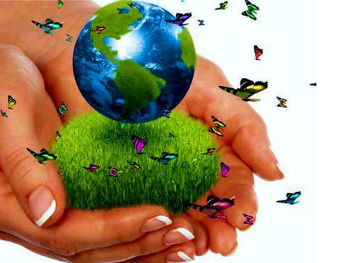El desarrollo sostenible y el COVID 19