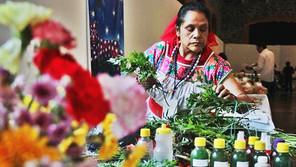 Defensa de la medicina tradicional hoy hablamos del pericón