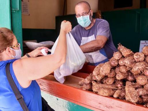 CUBA ¿Cómo avanzan las acciones para estimular la producción agropecuaria?