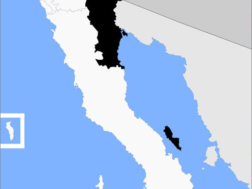 Mexicali, precedente histórico en la defensa del derecho al agua 22 marzo 2020