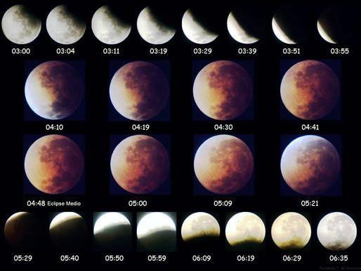 Las fases lunares en nuestros huertos