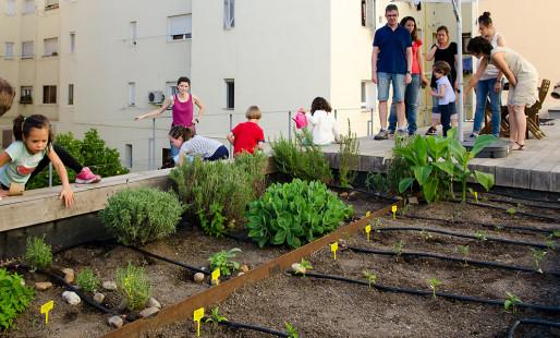 Huertos urbanos una acción hacia la soberanía alimentaria