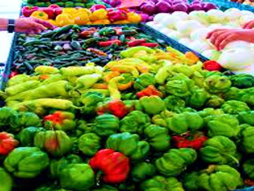 Necesario transformar el sector agropecuario para la Soberanía alimentaria