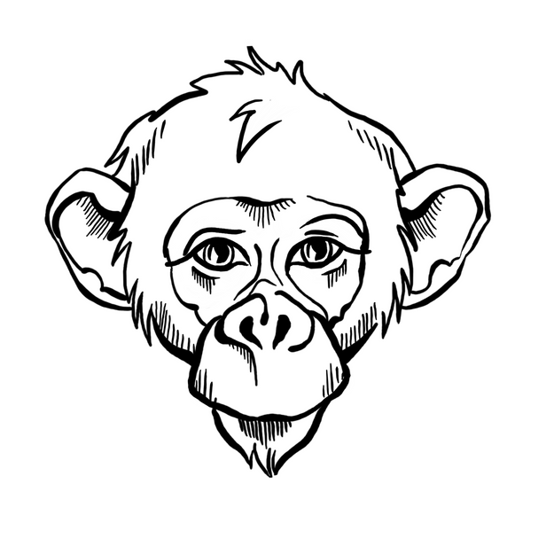 The MONKEY BUSINESS logo by EvLinche