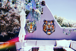 TIGER HEADS FOR VIP TABLE @ BLUE MARLIN IBIZA