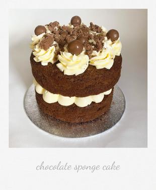 polariod chocolate sponge