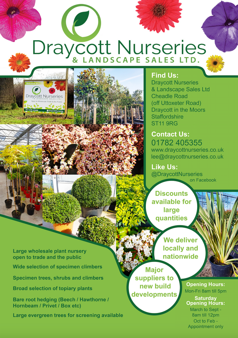Plant Nursery A5 Advert