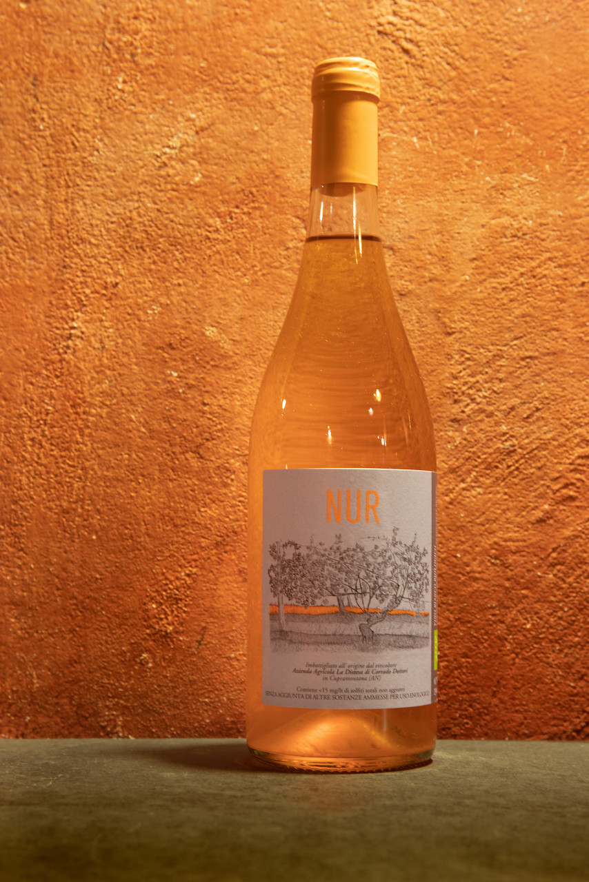 Vino bianco macerato Corrado Dottori La Distesa Nur 2019