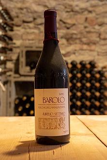 """Barolo """"Rocche Dell'Annunziata"""" 2013 Settimo Aurelio"""