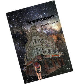 Breakdown book cover