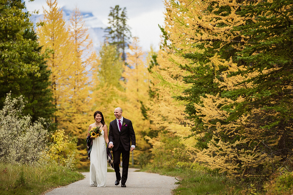 Canmore elopement photographer with bride and groom walking next to Larch Trees in Canmore