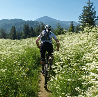 Alex Popov Photography mountain biking in Banff