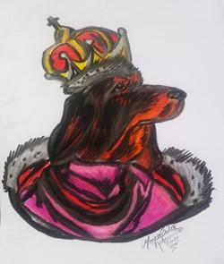 O Cão Rei