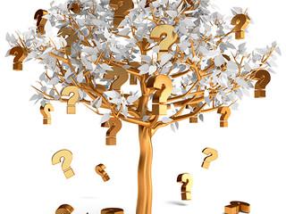 Que árvore somos?