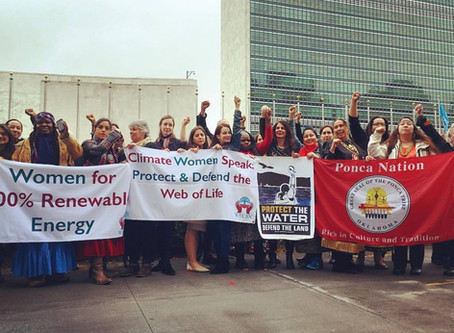 WECAN & Women For Climate Justice On The Ground NYC/DC April 2017