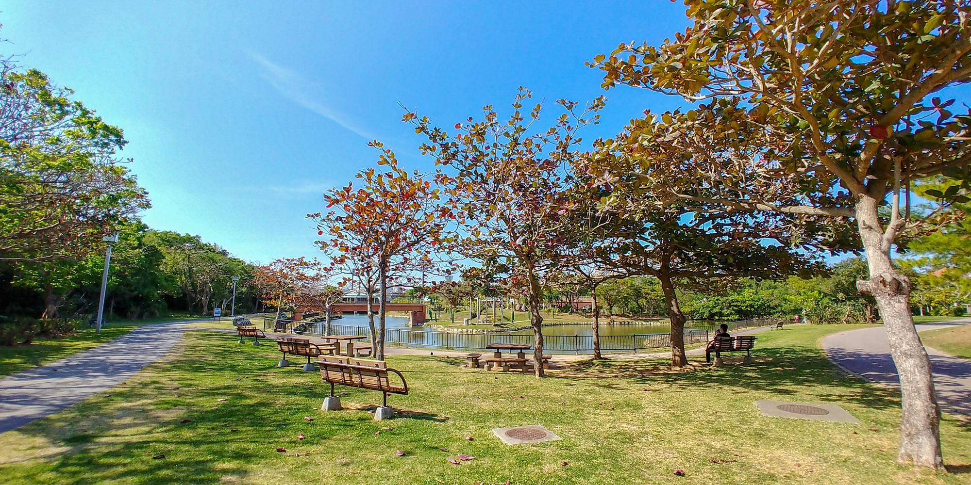 総合運動公園水辺