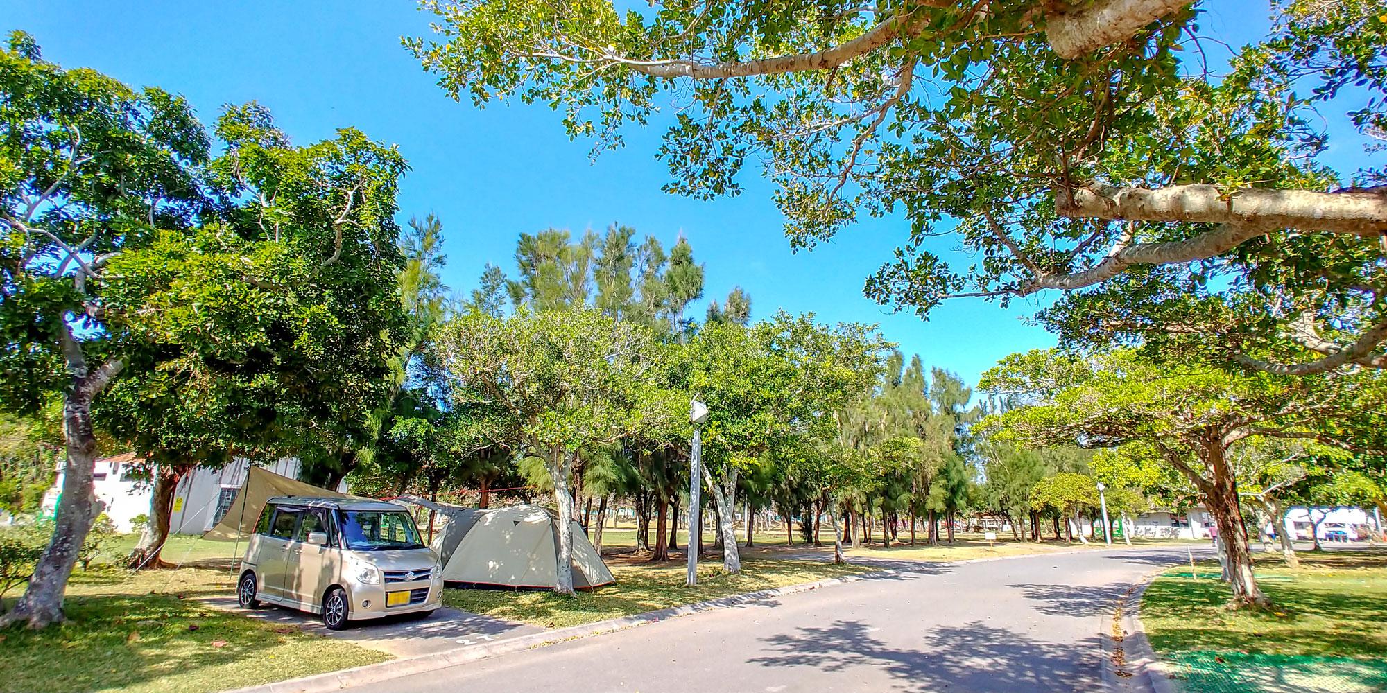 公園内オートキャンプ場