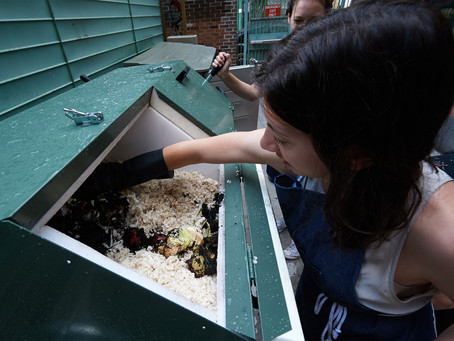 What to watch with compost