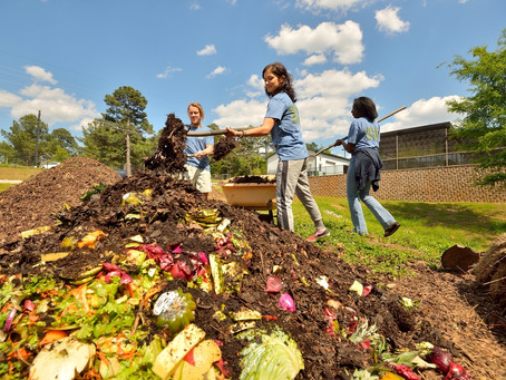 Compost Around The World