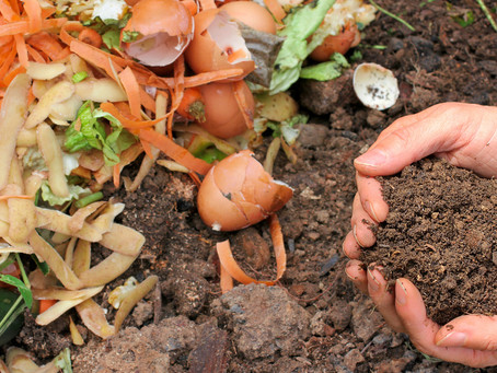 Compostonomics: Where Composting Fits in the Circular Economy