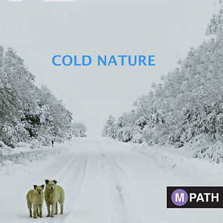 COLD NATURE