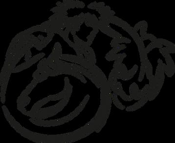 Logo CFM.png