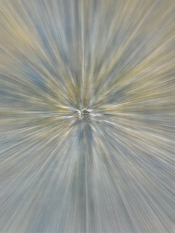 Abstract 1625 zoom