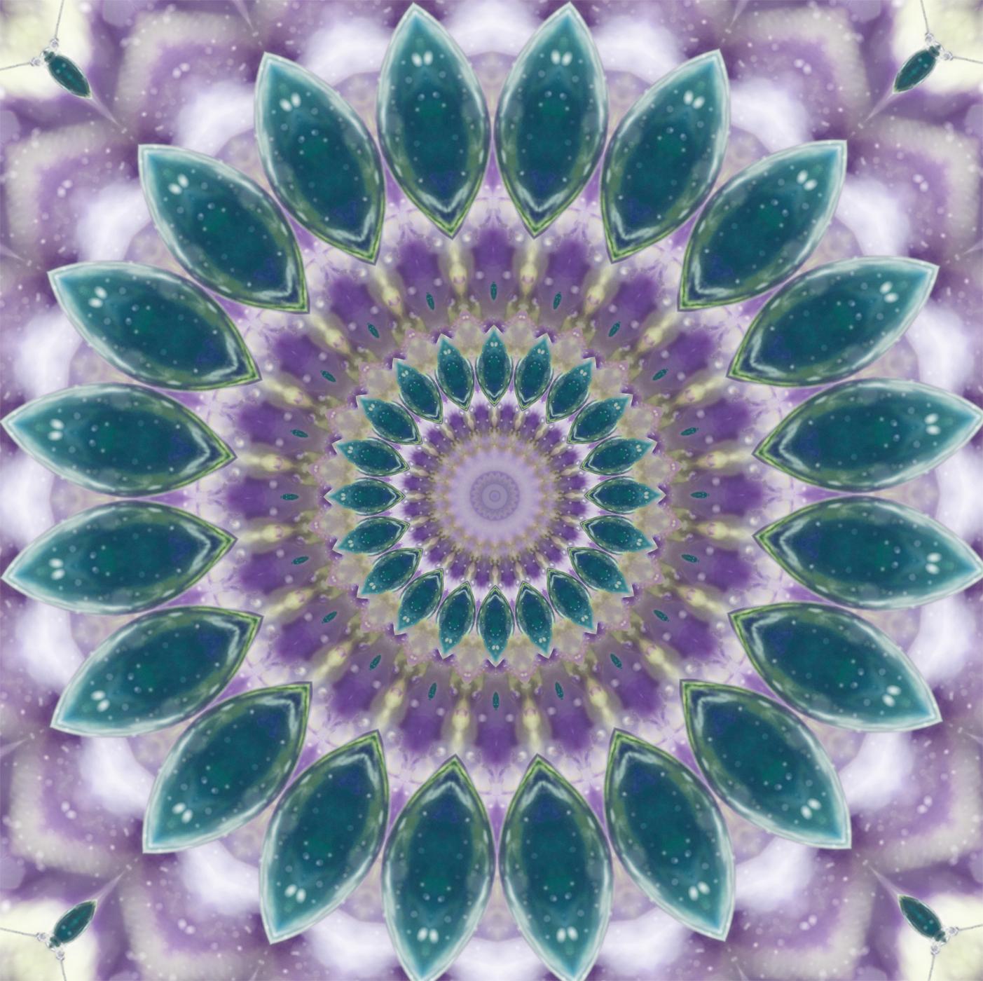 kaleidoscope purple 2 - 1767