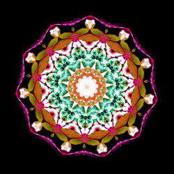 Cherry Blossom Kaleidoscope A-4