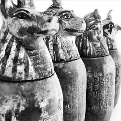 pharaohs 0470